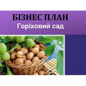 Бізнес-план горіховий сад