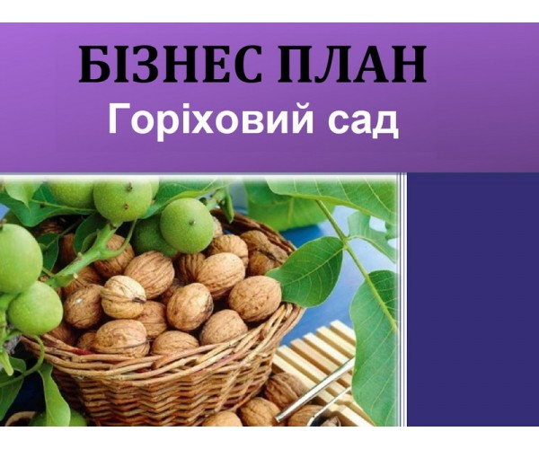Бізнес-план горіховий сад та малина